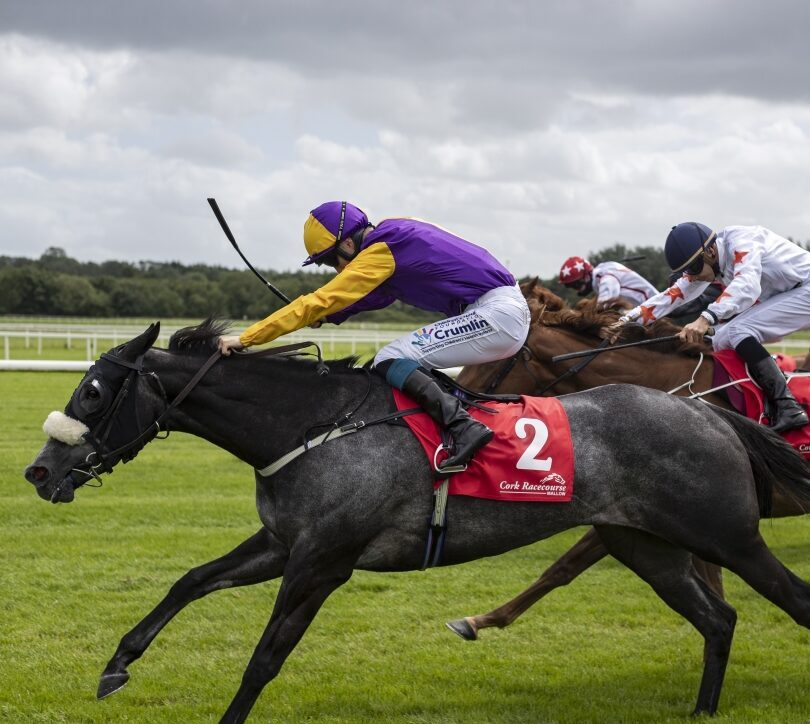 Sonaiyla snapped up by Moyglare Stud for 900,000gns at Tattersalls December Mare Sale