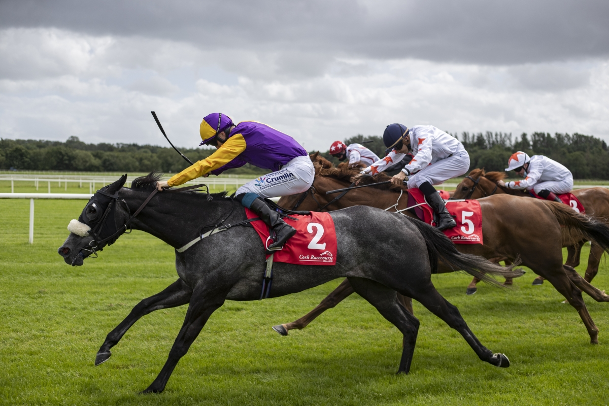 Triumphant Stakes Double for Dark Angel
