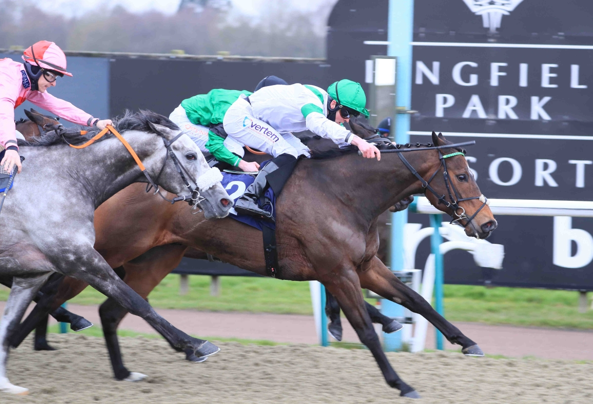 Listed Success for Exalted Angel at Lingfield