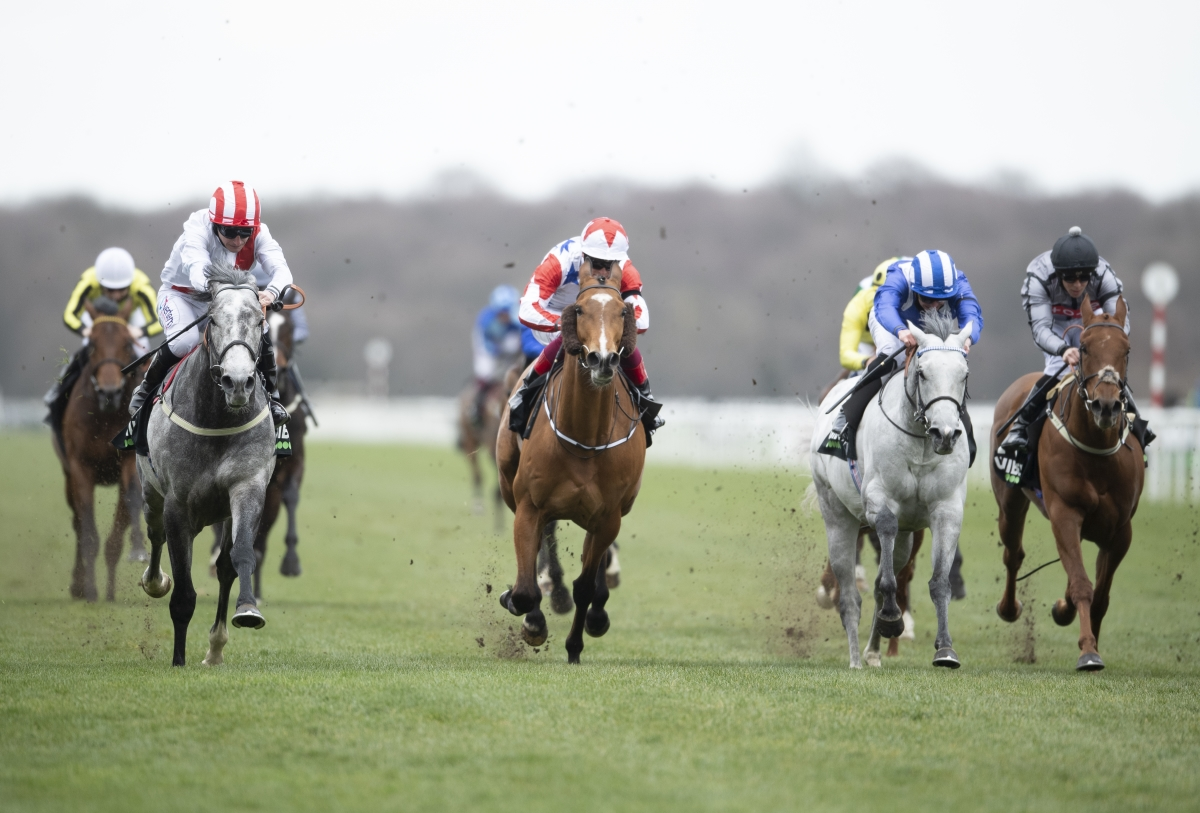 Top Rank Defies Penalty And Cruises Home in Doncaster Mile Stakes
