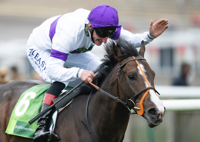 NEW for 2022 Supremacy Retires To Yeomanstown Stud
